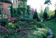 Trädgård Ängelsbäck