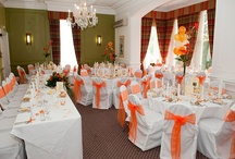 Orange Bows - Chair Covers