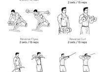 Shoulders/ Arms