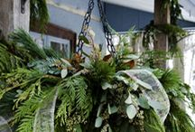 Outdoor Holiday Decor / by Amy@11MagnoliaLane