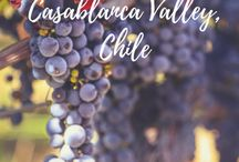 Chile Travel / Travel Tips and Inspiration for Chile, the beautiful country in South America. There is more to Chile than Patagonia and the capital Santiago and we are looking forward to discovering it.