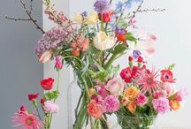 tuin en bloemen