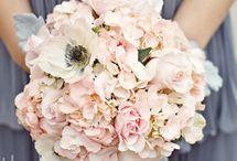 SoCal Wedding Ideas / by Shelley Morgan