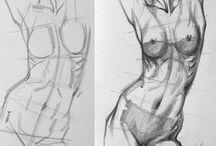 2- anatomy