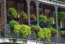 Architecture: Balconies