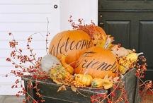 Thanksgiving / by Sandra Pecora