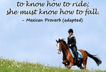 Horseback riding / Horses forever