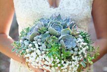 Wedding trends - Succulents