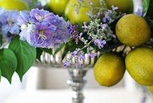 Elegant Dining Farmhouse Style | PFt