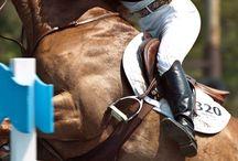 posts Equestre Online
