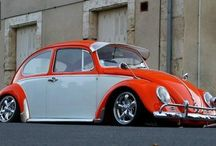 Cool Beetles