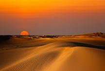 Sunsets / by Bélinda Ibrahim