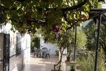 Country House in Bermejo / A lovely property walking distance to the pretty Andalucian village of Bermejo. Close to the spectacular national park of El Chorro