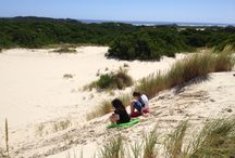 Tasmania with Kids / Tasmania is not just for couples. It is a great family holiday destination. So start exploring now.