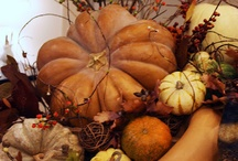 Thanksgiving ~ Fall Harvest Time ~ Be Thankful / I love Fall decorations. The colors of Fall are beautiful. Thanksgiving is a great time for family gatherings, being thankful, delicious food, and beautiful decorations. / by Margaret Darby