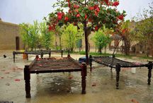Scenes of Punjab / City, village life, history and other snapshots of daily life in Punjab. / by Raj G - @Rajinator