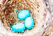 Birds Nest / Watercolour and acrylic paintings of birds nests