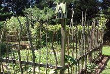 Garten gestalten Zaun und Sichtschutz