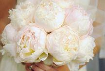 Wedding Ideas / by Christine Anne