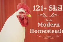Homestead Info