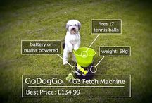 Dog Tweets / Dog love to Tweet too! / by GoDogGo Fetch Machine Automatic Ball Thrower for Dogs
