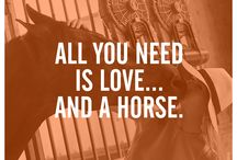 Sayings horses