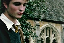[HP characters] Cedric Diggory