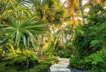 jardins tropicales