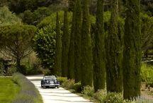 Provence Landschaft