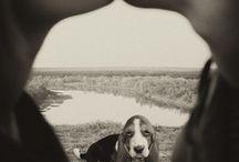 Fotografování se psem