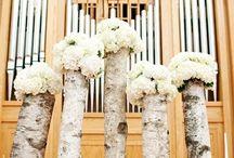 Wedding Ideas for Kim