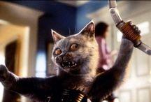 CAT CINE TV CARTOON / Les chats à 'écran