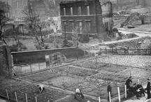 Gardening history