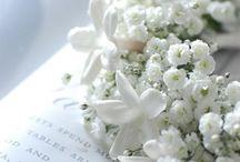 """Passion pour """"Les couronnes de Fleurs"""""""