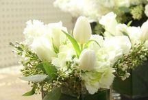 Sympathy/Get Well Flowers