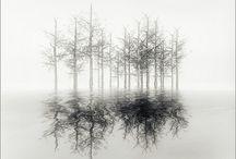 Michael Kenna Photogragh