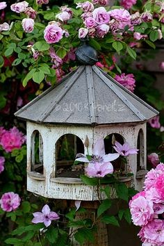 Bird feeder among roses and clematis