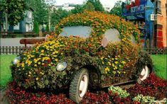 30 Schöne Blumen und Gartenkunst Ideen - die inspirierende Macht der Natur