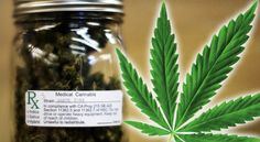Medical Marijuana States See Painkiller Deaths Drop by 25% August 11, 2015