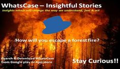 WhatsCase: Forest Fire