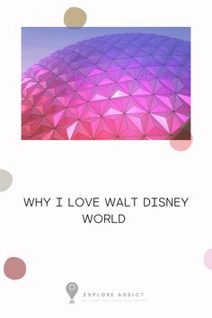Walt Disney World- the happiest place on Earth, and one of my favourite places to go. Find the 8 favourite things I love about Walt Disney World and why you should start palling your trip now! #Disney #WDW #Travel #Photography #blog #aesthetic #places to travel #adventure #destinations #photos #USA #travel tips #hacks #travel blog #travel blog photography #ideas Florida Travel, Usa Travel, Travel Tips, Photography Ideas, Travel Photography, Some Pictures, Walt Disney World, Travel Pictures, Photo S