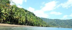 Golfo Dulce, Costa Rica - Golfo Dulce Travel Information, Hotels, Tours, Transportation