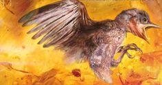 Εκπληκτική ανακάλυψη: Βρέθηκε αυτούσιο πτηνό 99 εκατ. ετών (βίντεο)