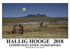Hallig Hooge Kalender 2018 - Foto-Augenweide - Evelyn Mazanke