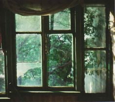 lights, forests, broken window, november, houses, creepers, old windows, photography, bohemian