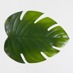 Pin for Later: 20 Spring Switch-Ups Under $20  Channel a tropical vibe with these palm-leaf place mats ($17).