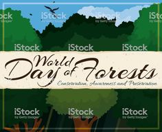Beautiful Grove and Scroll Promoting World Day of Forests World Days, Social Media Ad, Sky View, Video Image, Free Vector Art, Feature Film, Photo Illustration, Forests, Royalty Free Images