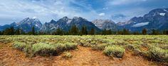 Grand Teton National Park (panoramic view). Wyoming.