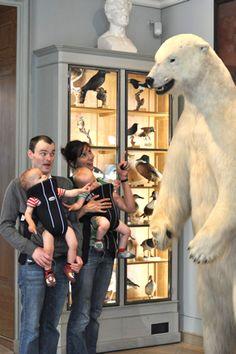 Musee de la chasse et de la nature a Paris
