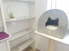 Pokoj 1 - VIP Apartmá Cat Hotel, Tub Chair, Accent Chairs, Luxury, Cats, Furniture, Home Decor, Upholstered Chairs, Gatos